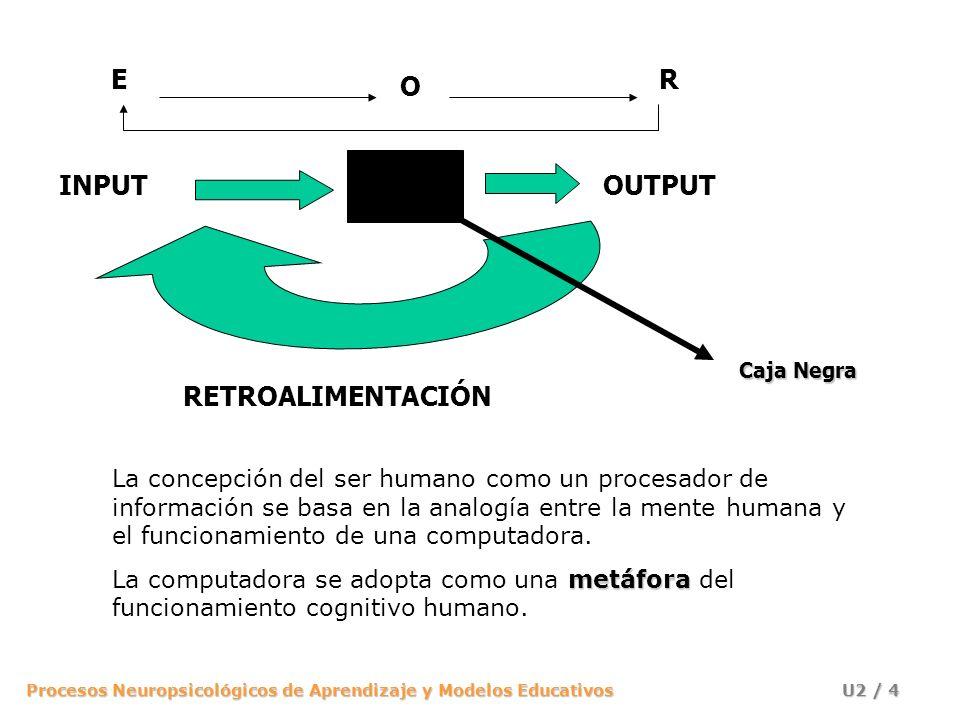 Procesos Neuropsicológicos de Aprendizaje y Modelos Educativos U2 / 4 INPUTOUTPUT RETROALIMENTACIÓN E O R La concepción del ser humano como un procesa