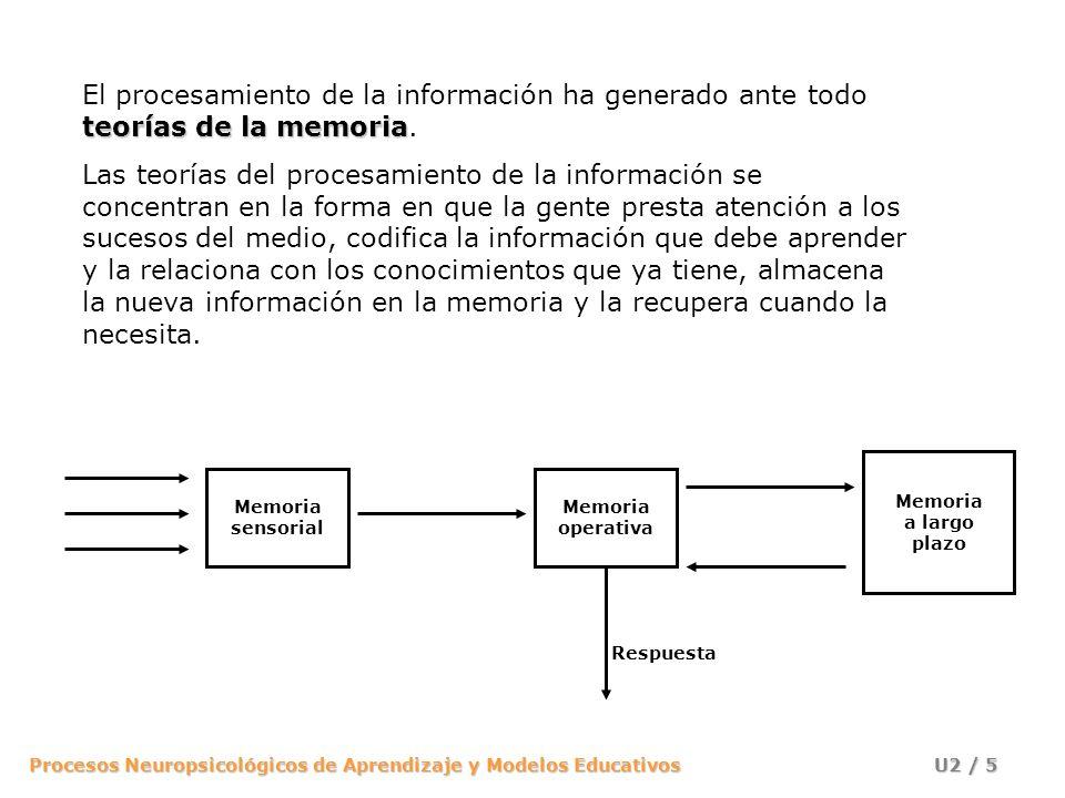 Procesos Neuropsicológicos de Aprendizaje y Modelos Educativos U2 / 26 La Memoria Operativa tiene tres componentes (Gathercole, 1993): A.Ejecutivo Central: A.Ejecutivo Central: Regula el flujo de información a través de la memoria operativa y dirige el almacenamiento y la recuperación de la información a la MLP.