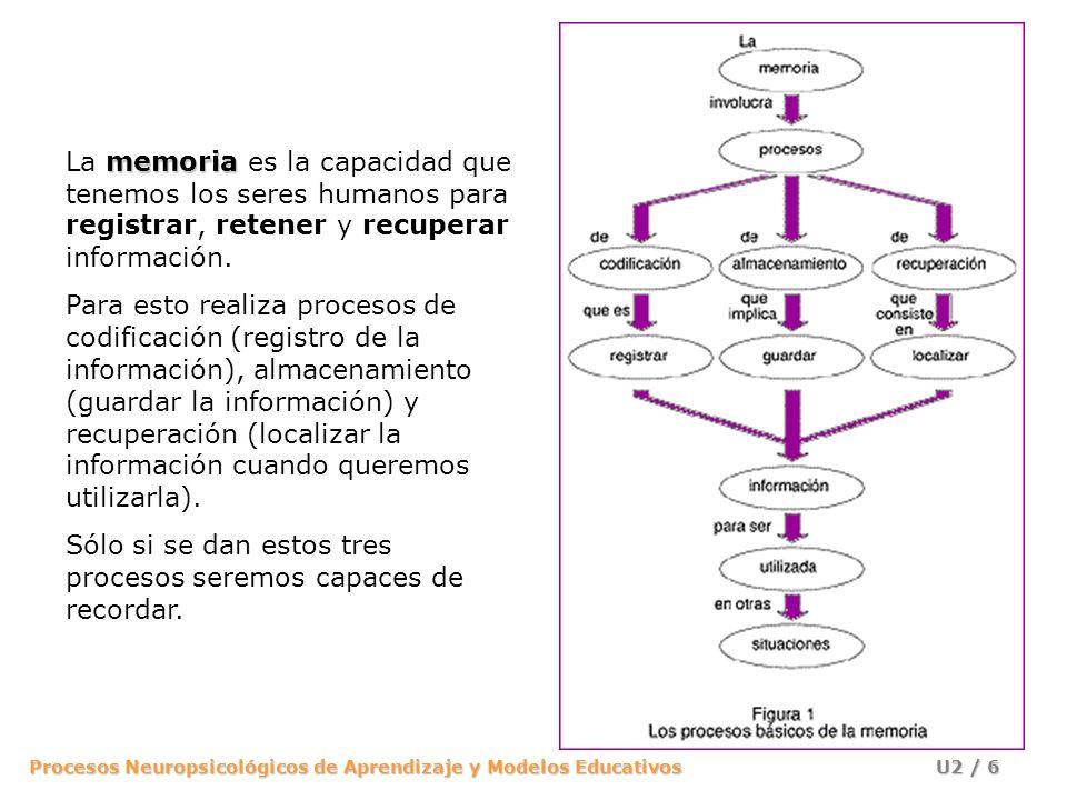 Procesos Neuropsicológicos de Aprendizaje y Modelos Educativos U2 / 17 Memoria operativa Memoria a largo plazo Información sensorial de entrada Memoriasensorial Decaimiento Comparación con la información conocida Selección Para que una entrada sea percibida, debe mantenerse en el registro sensorial y compararse con los conocimientos en la Memoria a Largo Plazo.