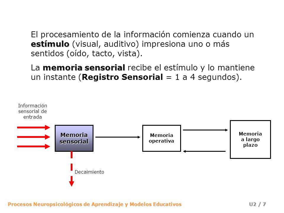 Procesos Neuropsicológicos de Aprendizaje y Modelos Educativos U2 / 28 Información sensorial de entrada MemoriasensorialMemoriaoperativa Memoria a largo plazo Selección Codificación Recuperación Decaimiento Respuesta Repaso