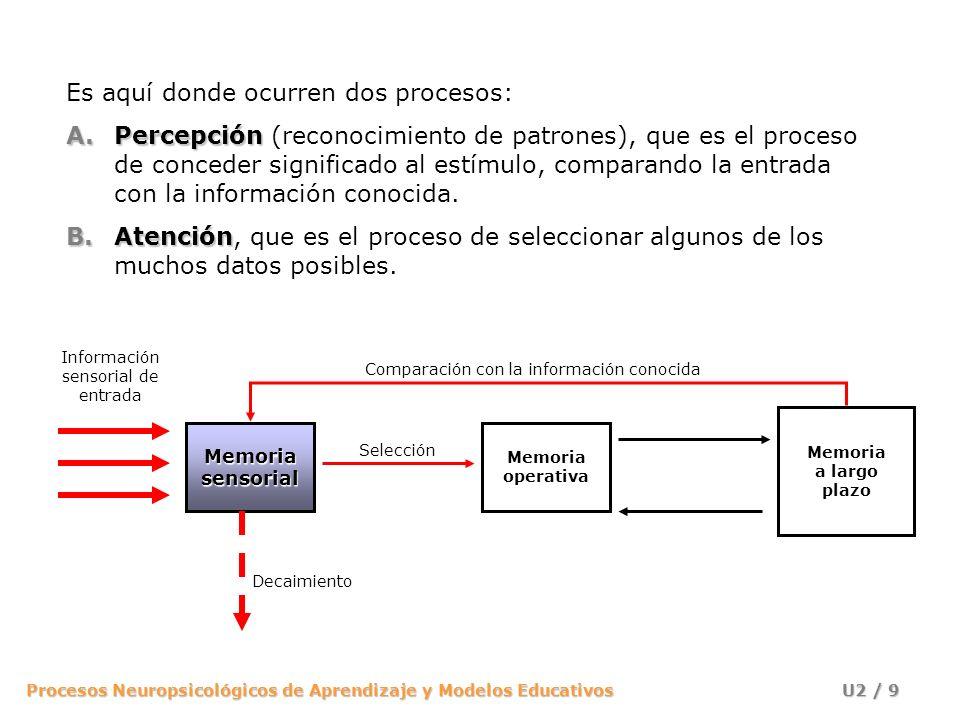 Procesos Neuropsicológicos de Aprendizaje y Modelos Educativos U2 / 10 Modelo de filtro de Broadbent Modelo de filtro de Broadbent (1958): diferentes canales La información se recibe en la memoria sensorial por diferentes canales.