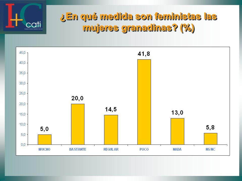 ¿En qué medida son feministas las mujeres granadinas? (%) ¿En qué medida son feministas las mujeres granadinas? (%)