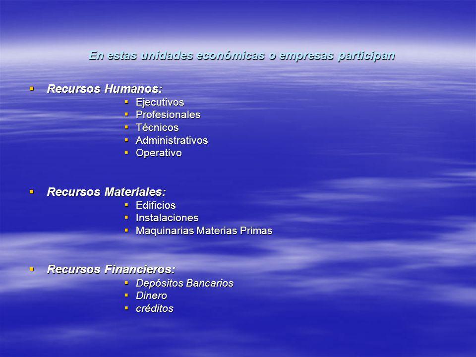 En estas unidades económicas o empresas participan Recursos Humanos: Recursos Humanos: Ejecutivos Ejecutivos Profesionales Profesionales Técnicos Técn