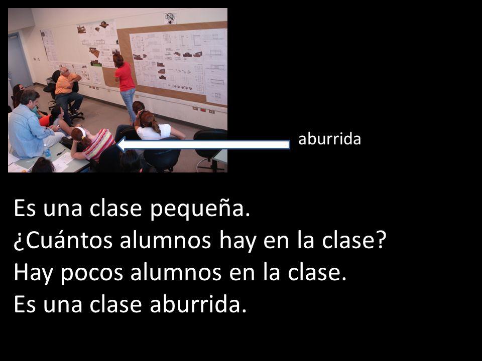 Es una clase pequeña. ¿Cuántos alumnos hay en la clase? Hay pocos alumnos en la clase. Es una clase aburrida. aburrida