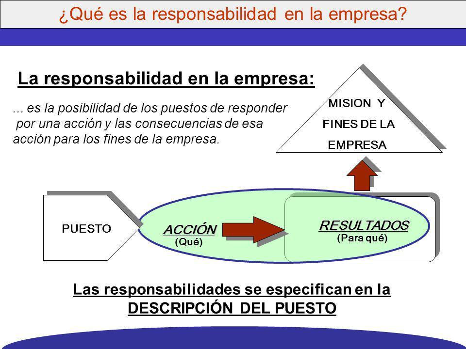 Organización y puestos: Responsabilidades Estándares de desempeño Estructura de puestos valuados Conocer la importancia relativa de los puestos Diagnó