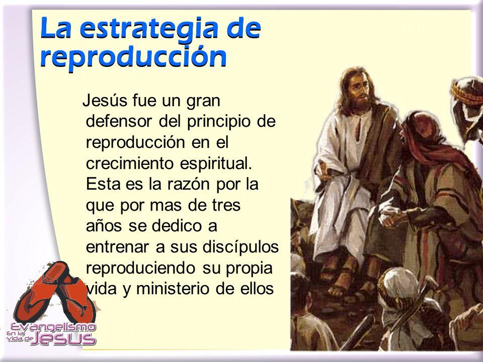 La estrategia de reproducción La estrategia de reproducción Jesús fue un gran defensor del principio de reproducción en el crecimiento espiritual. Est