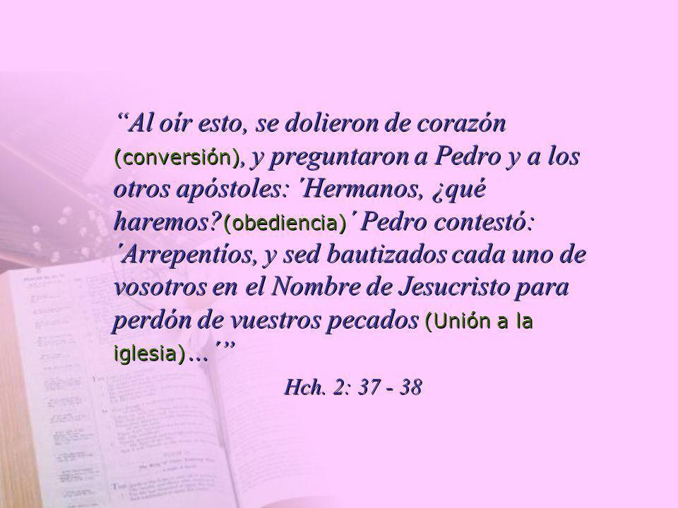 Al oír esto, se dolieron de corazón (conversión), y preguntaron a Pedro y a los otros apóstoles: ´Hermanos, ¿qué haremos? (obediencia) ´ Pedro contest