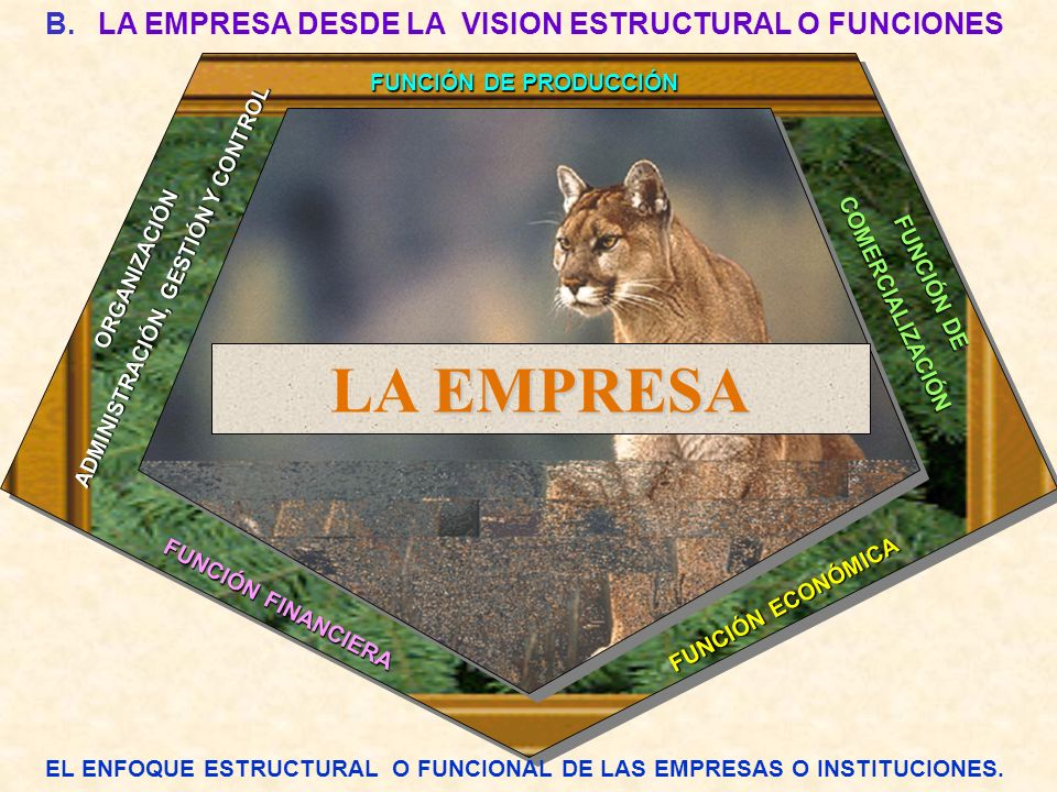 B.LA EMPRESA DESDE LA VISION ESTRUCTURAL O FUNCIONES FUNCIÓN DE PRODUCCIÓN FUNCIÓN FINANCIERA FUNCIÓN ECONÓMICA FUNCIÓN DE FUNCIÓN DE COMERCIALIZACIÓN COMERCIALIZACIÓN EL ENFOQUE ESTRUCTURAL O FUNCIONAL DE LAS EMPRESAS O INSTITUCIONES.
