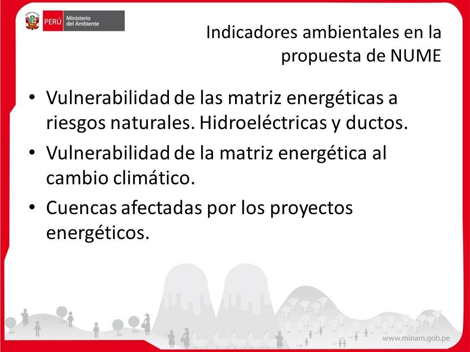 Indicadores ambientales en la propuesta de NUME Vulnerabilidad de las matriz energéticas a riesgos naturales. Hidroeléctricas y ductos. Vulnerabilidad