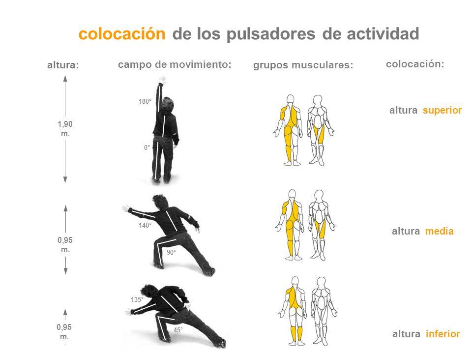 altura inferior altura media altura superior grupos musculares: 0,95 m. 45° 135° 1,90 m. 180° 0° colocación de los pulsadores de actividad campo de mo