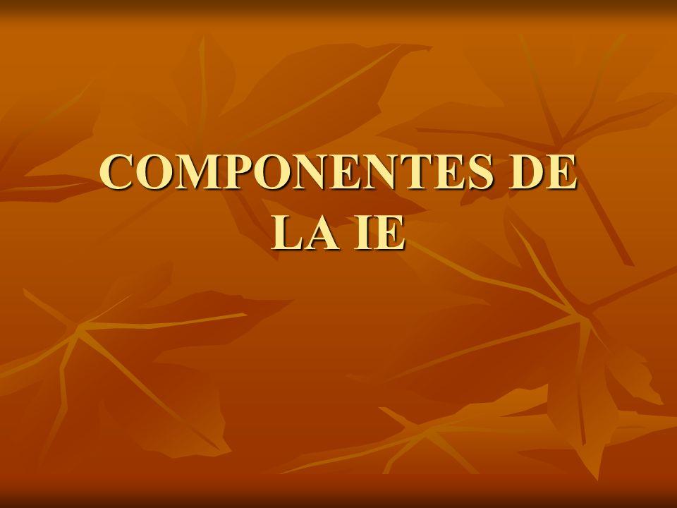 COMPONENTES DE LA IE