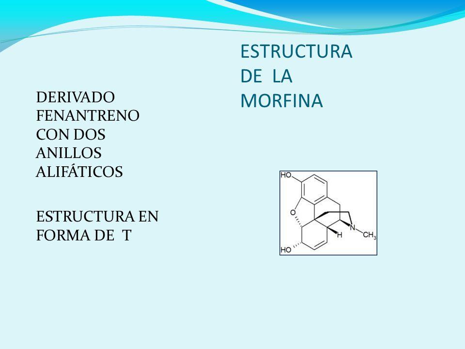 ESTRUCTURA DE LA MORFINA DERIVADO FENANTRENO CON DOS ANILLOS ALIFÁTICOS ESTRUCTURA EN FORMA DE T