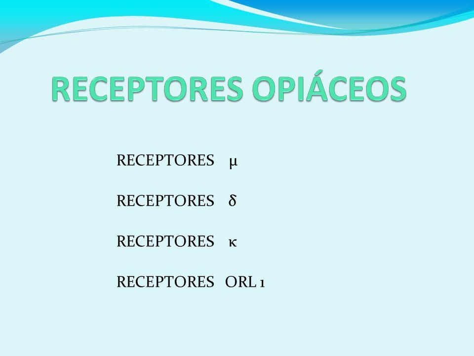 RECEPTORES µ RECEPTORES δ RECEPTORES κ RECEPTORES ORL 1