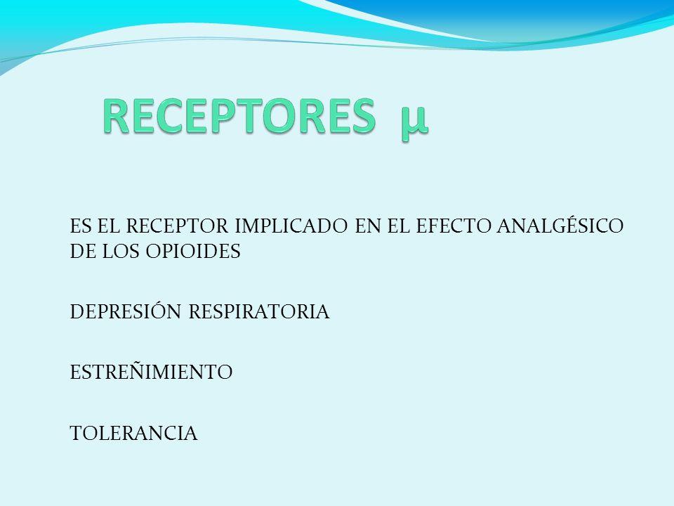 ES EL RECEPTOR IMPLICADO EN EL EFECTO ANALGÉSICO DE LOS OPIOIDES DEPRESIÓN RESPIRATORIA ESTREÑIMIENTO TOLERANCIA
