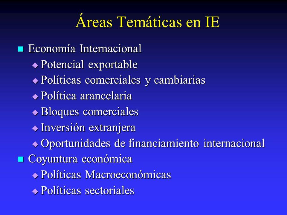 Áreas Temáticas en IE Economía Internacional Economía Internacional Potencial exportable Potencial exportable Políticas comerciales y cambiarias Polít