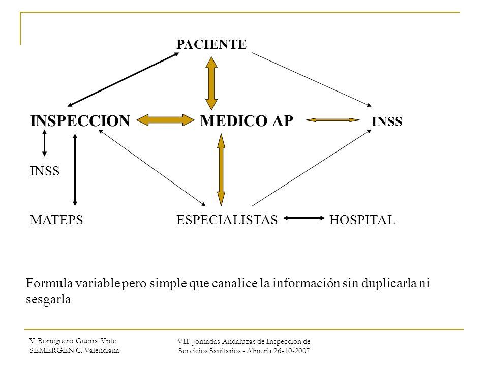 V. Borreguero Guerra Vpte SEMERGEN C. Valenciana VII Jornadas Andaluzas de Inspeccion de Servicios Sanitarios - Almeria 26-10-2007 PACIENTE INSPECCION