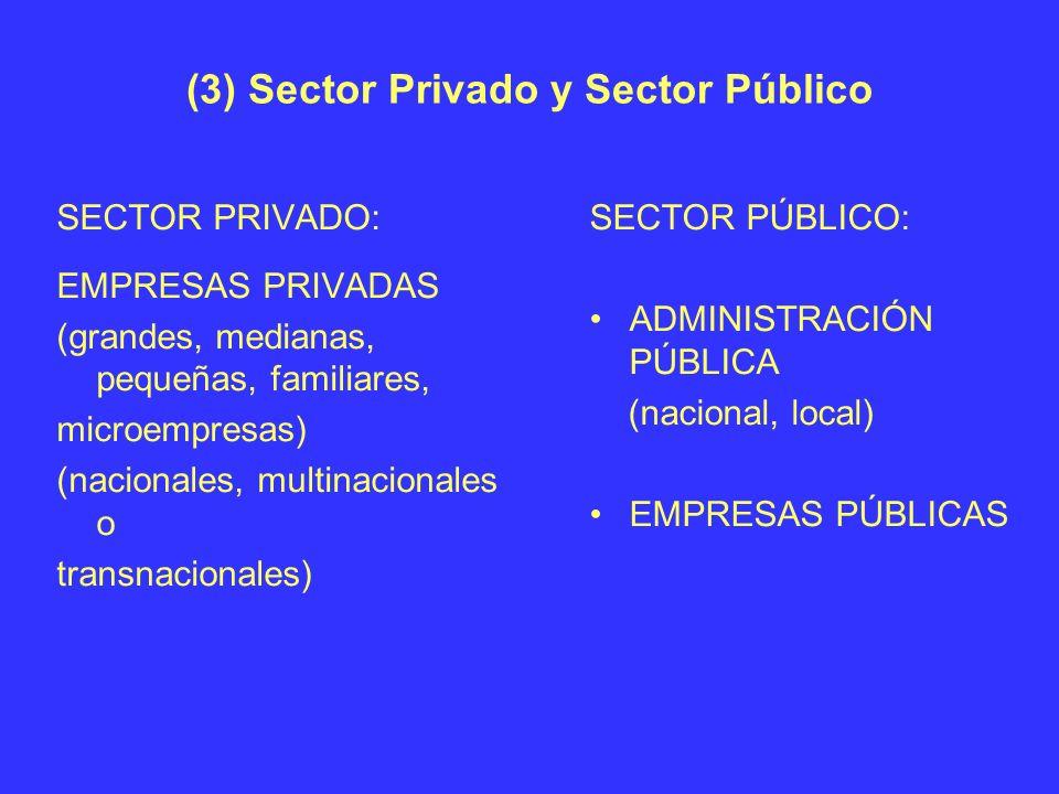 (3) Sector Privado y Sector Público SECTOR PRIVADO: EMPRESAS PRIVADAS (grandes, medianas, pequeñas, familiares, microempresas) (nacionales, multinacio