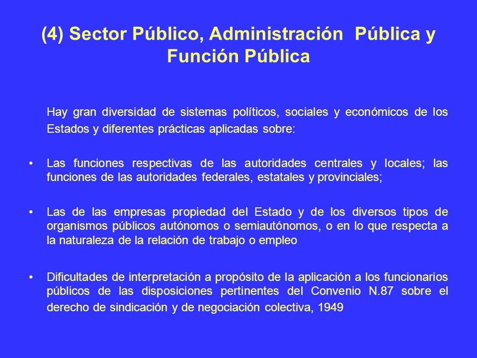 (4) Sector Público, Administración Pública y Función Pública Hay gran diversidad de sistemas políticos, sociales y económicos de los Estados y diferen