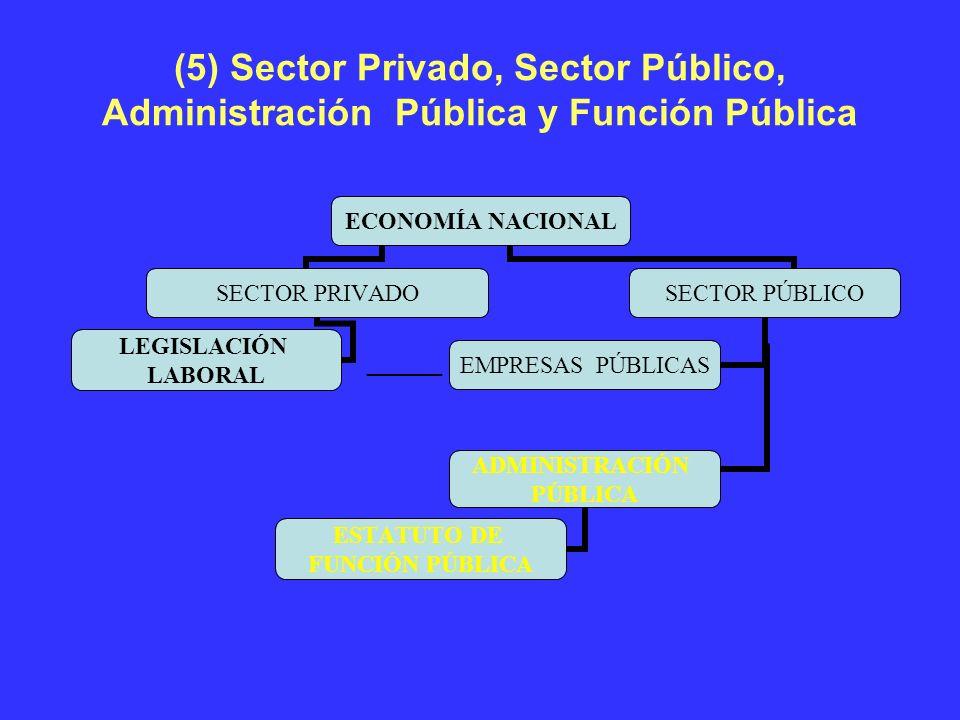 (5) Sector Privado, Sector Público, Administración Pública y Función Pública