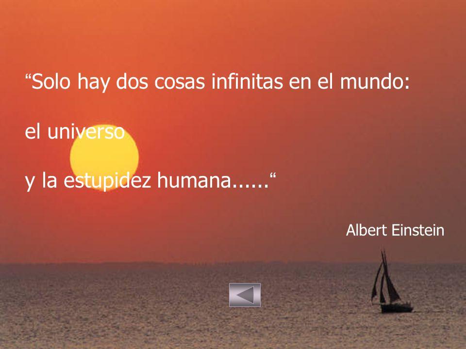 Solo hay dos cosas infinitas en el mundo: el universo y la estupidez humana...... Albert Einstein