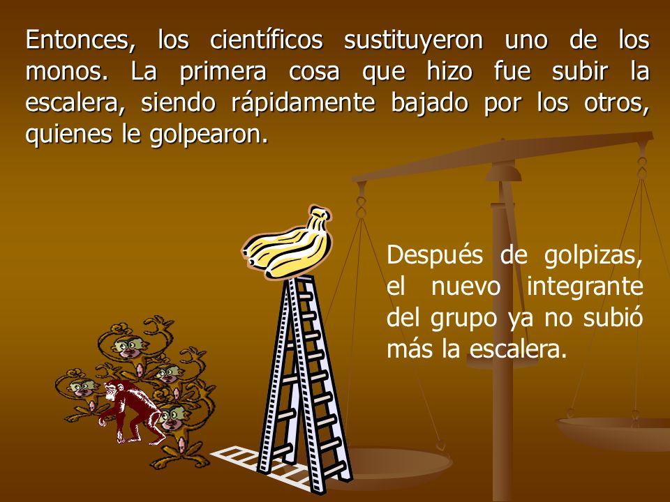 Entonces, los científicos sustituyeron uno de los monos. La primera cosa que hizo fue subir la escalera, siendo rápidamente bajado por los otros, quie