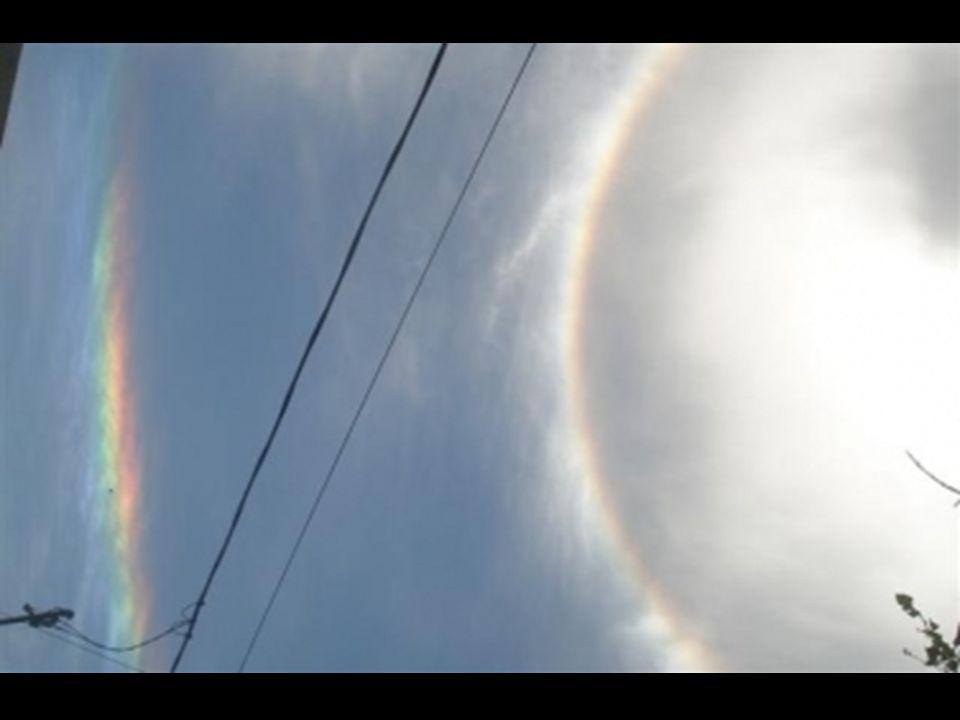 Según sus explicaciones, las imágenes fueron tomadas alrededor del 15 de febrero de este año, 2008, sobre las 15 horas locales. En San Francisco, prov