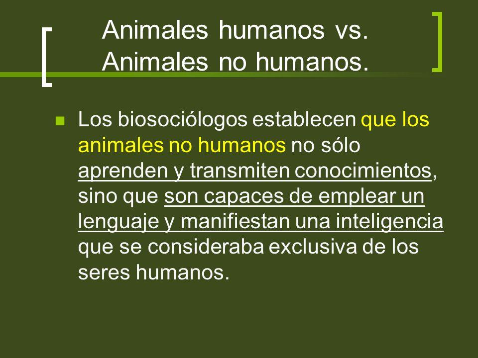 Animales humanos vs. Animales no humanos. Los biosociólogos establecen que los animales no humanos no sólo aprenden y transmiten conocimientos, sino q