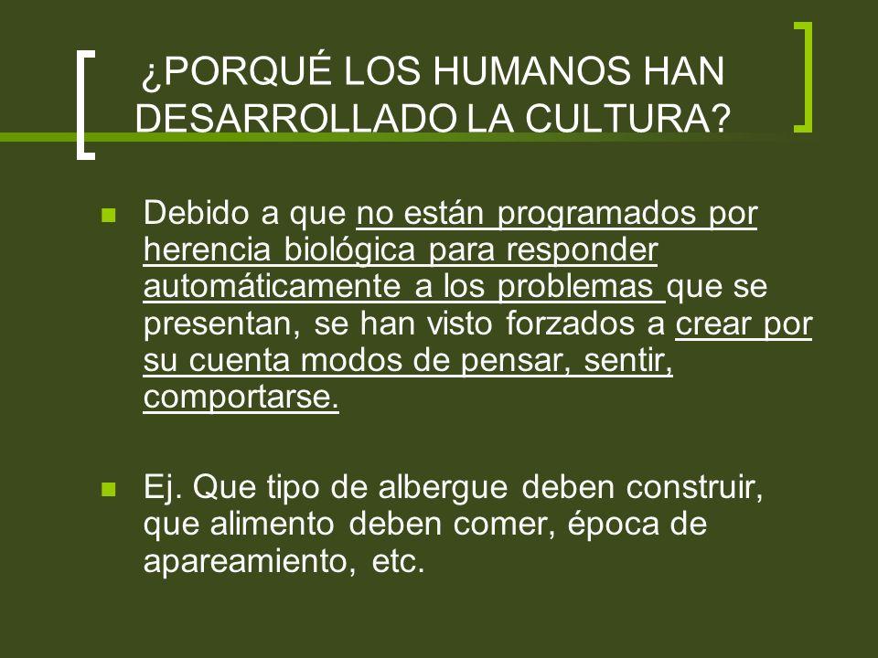 ¿SON CAPACES LOS ANIMALES DE CREAR CULTURA.