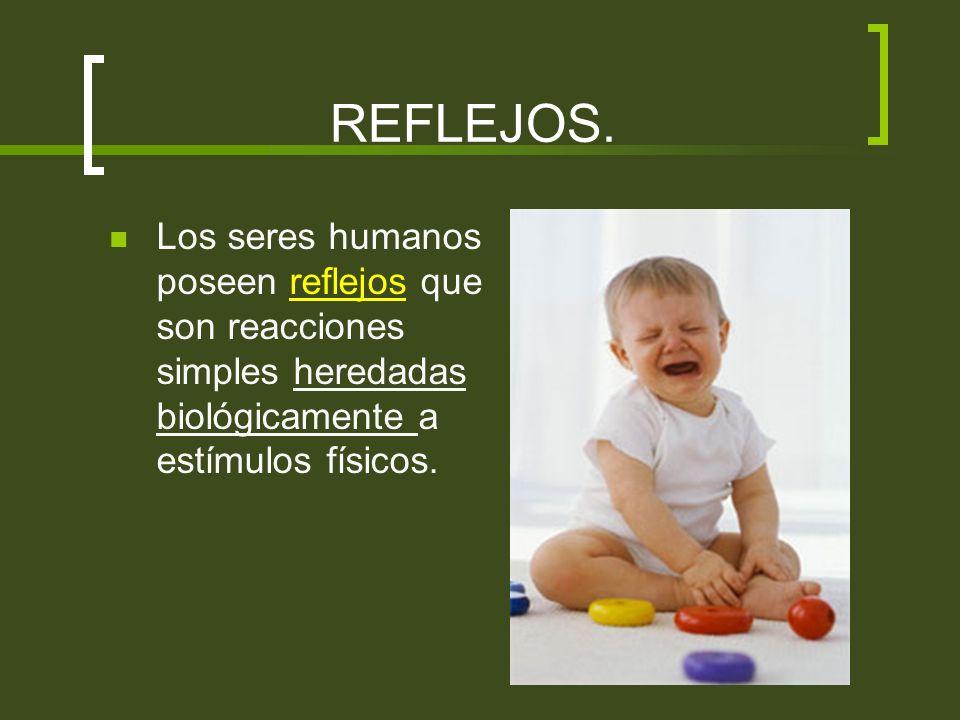 REFLEJOS. Los seres humanos poseen reflejos que son reacciones simples heredadas biológicamente a estímulos físicos.