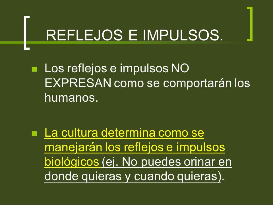 Animales humanos vs.Animales no humanos.