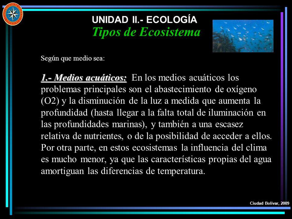 UNIDAD II.- ECOLOGÍA Ciudad Bolívar, 2009 Tipos de Ecosistema Según que medio sea: 1.- Medios acuáticos: 1.- Medios acuáticos: En los medios acuáticos