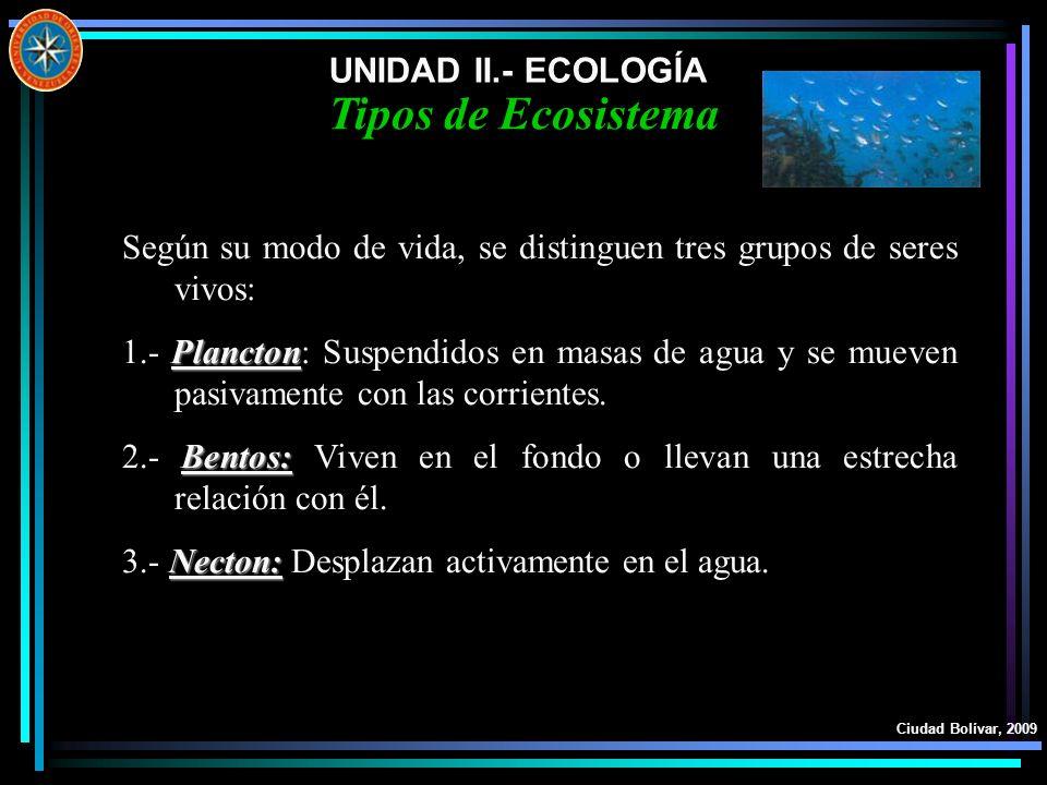 UNIDAD II.- ECOLOGÍA Ciudad Bolívar, 2009 Tipos de Ecosistema Según su modo de vida, se distinguen tres grupos de seres vivos: Plancton 1.- Plancton: