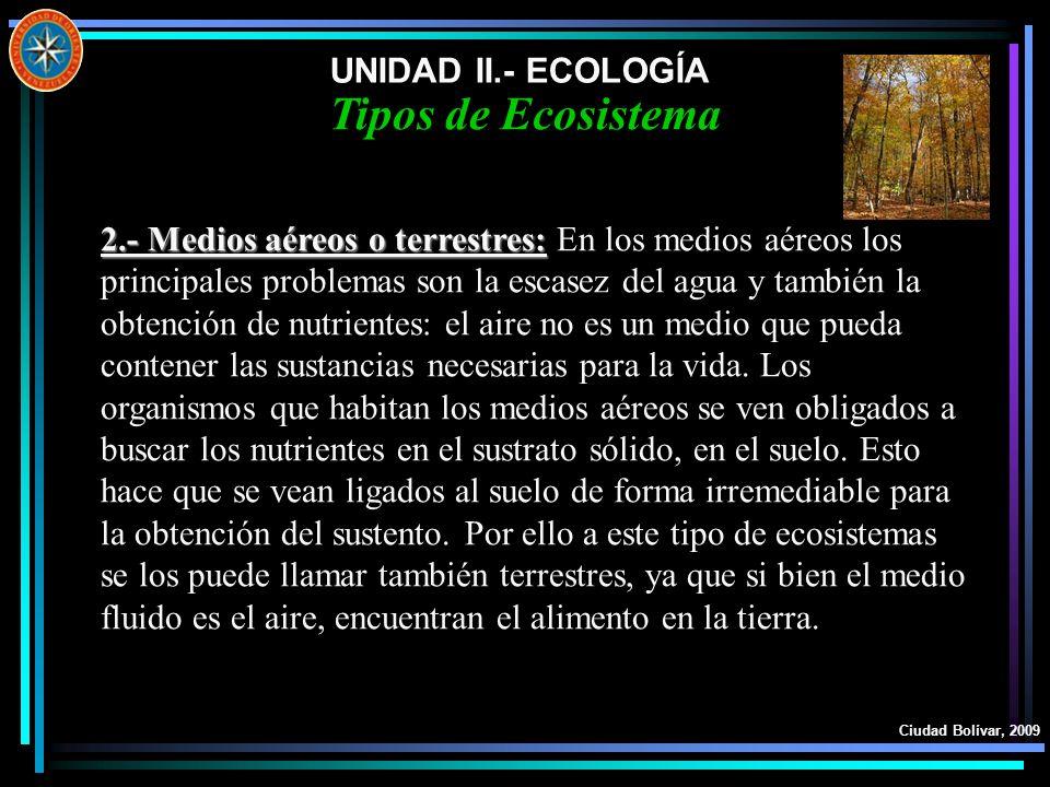 UNIDAD II.- ECOLOGÍA Ciudad Bolívar, 2009 Tipos de Ecosistema 2.- Medios aéreos o terrestres: 2.- Medios aéreos o terrestres: En los medios aéreos los