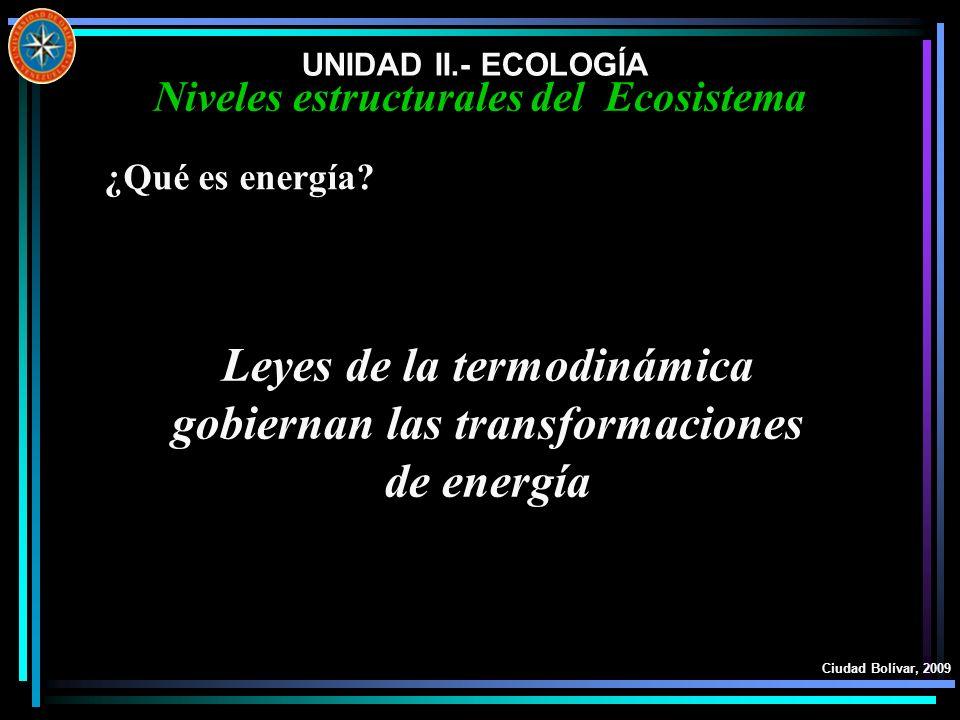 UNIDAD II.- ECOLOGÍA Ciudad Bolívar, 2009 Niveles estructurales del Ecosistema ¿Qué es energía? Leyes de la termodinámica gobiernan las transformacion