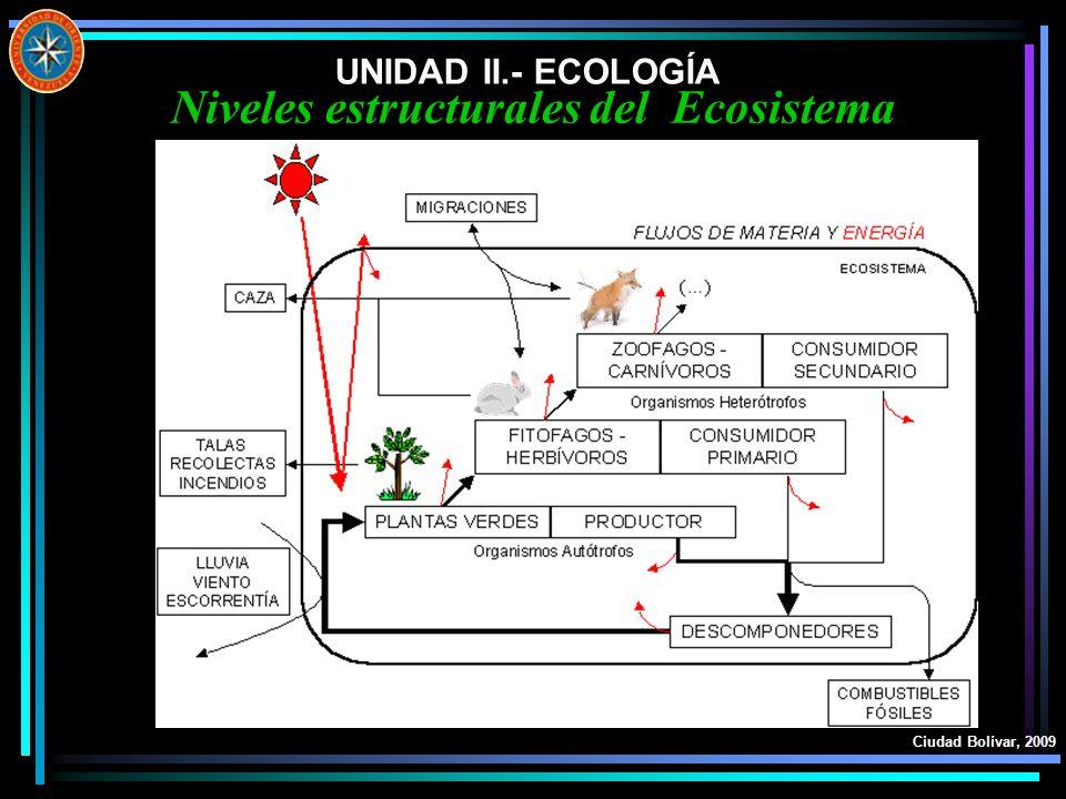 UNIDAD II.- ECOLOGÍA Ciudad Bolívar, 2009 Niveles estructurales del Ecosistema
