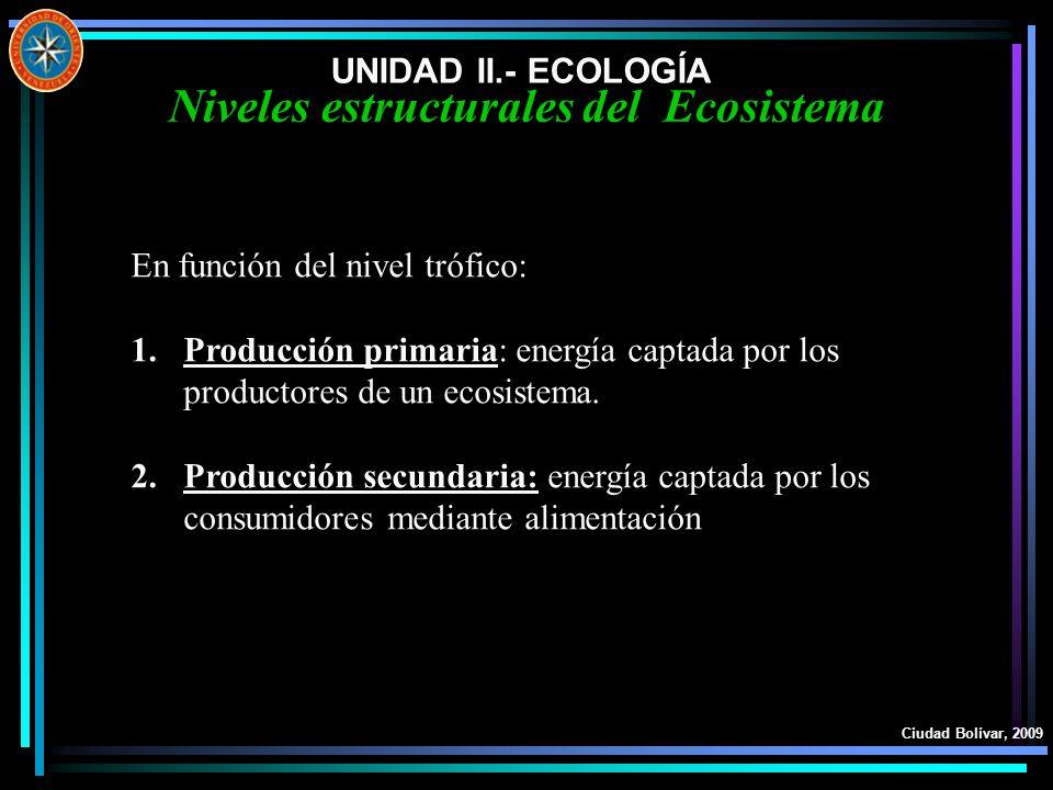 UNIDAD II.- ECOLOGÍA Ciudad Bolívar, 2009 Niveles estructurales del Ecosistema En función del nivel trófico: 1.Producción primaria: energía captada po