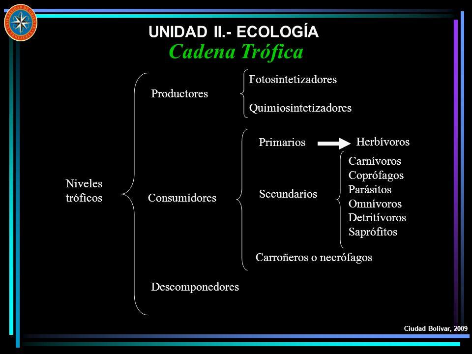 UNIDAD II.- ECOLOGÍA Ciudad Bolívar, 2009 Cadena Trófica Niveles tróficos Productores Consumidores Descomponedores Fotosintetizadores Quimiosintetizad