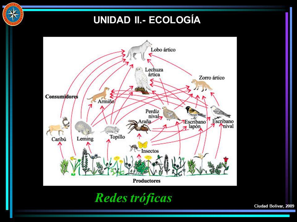 UNIDAD II.- ECOLOGÍA Ciudad Bolívar, 2009 Redes tróficas