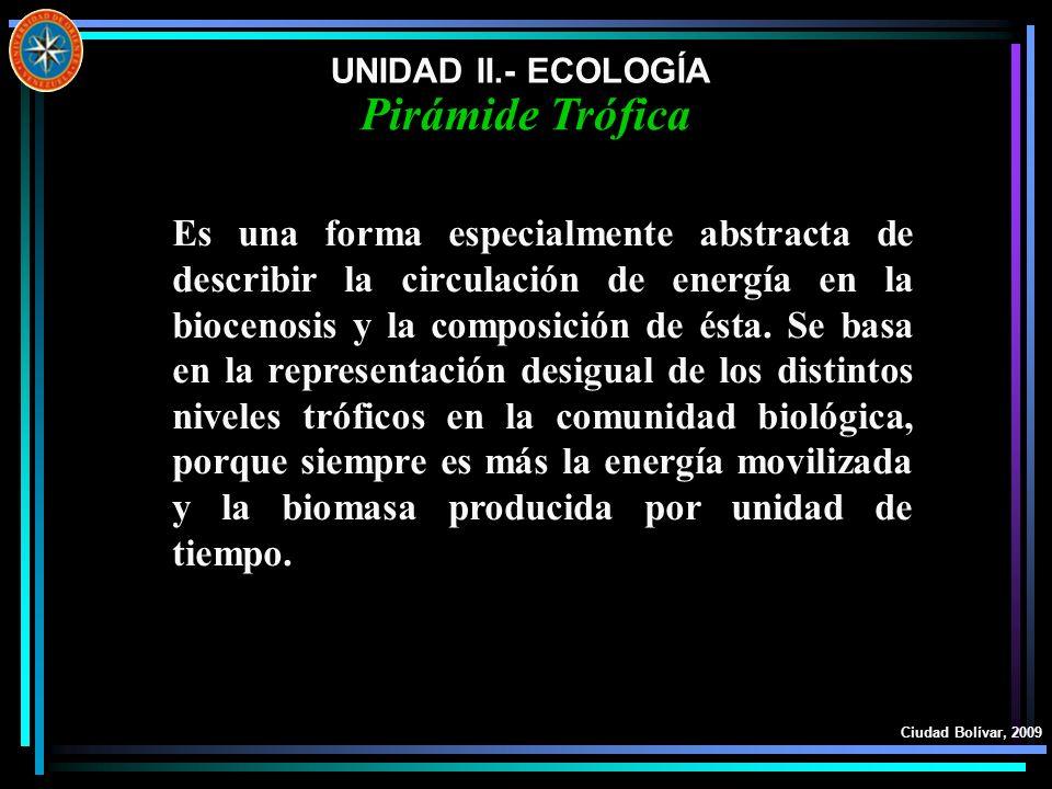 UNIDAD II.- ECOLOGÍA Ciudad Bolívar, 2009 Es una forma especialmente abstracta de describir la circulación de energía en la biocenosis y la composició