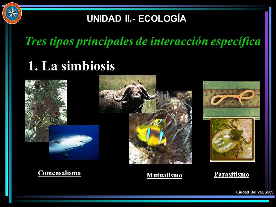 UNIDAD II.- ECOLOGÍA Ciudad Bolívar, 2009 1. La simbiosis Tres tipos principales de interacción específica Comensalismo Mutualismo Parasitismo