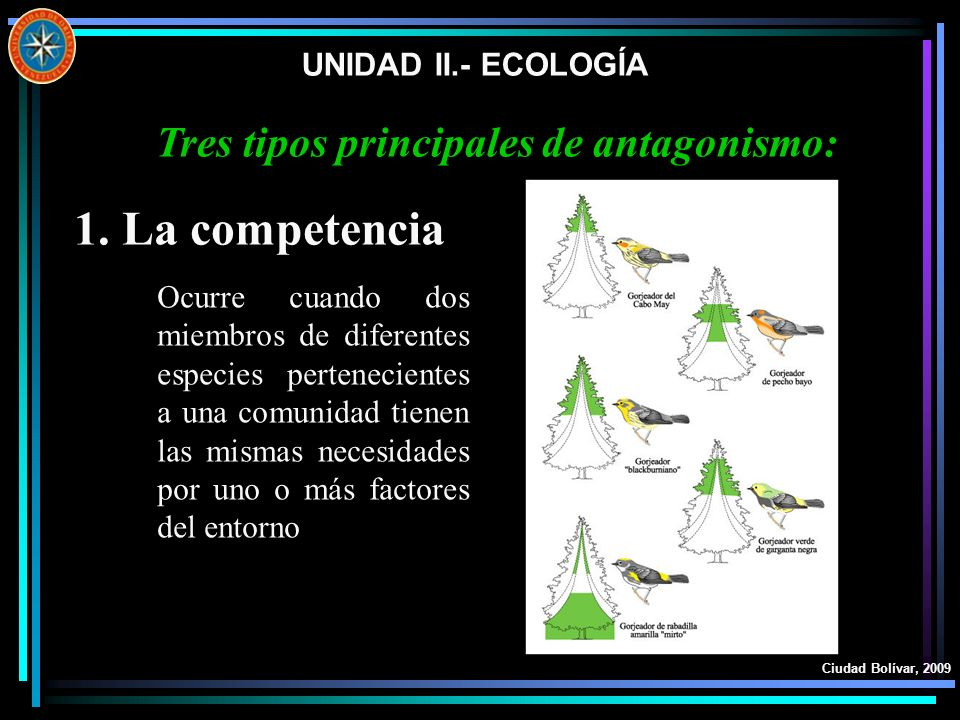 UNIDAD II.- ECOLOGÍA Ciudad Bolívar, 2009 1.La competencia Tres tipos principales de antagonismo: Ocurre cuando dos miembros de diferentes especies pe