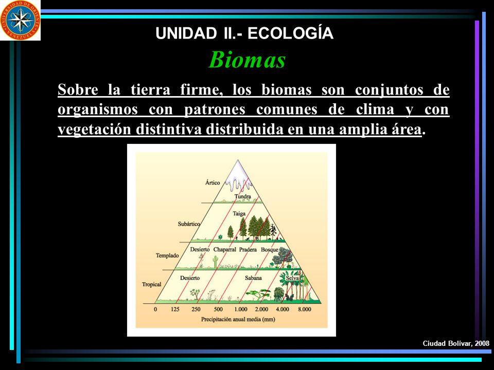UNIDAD II.- ECOLOGÍA Ciudad Bolívar, 2008 Biomas Sobre la tierra firme, los biomas son conjuntos de organismos con patrones comunes de clima y con veg