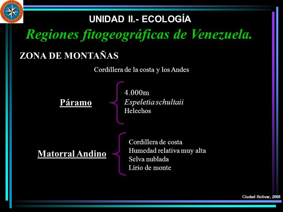 UNIDAD II.- ECOLOGÍA Ciudad Bolívar, 2008 Regiones fitogeográficas de Venezuela. ZONA DE MONTAÑAS Páramo Matorral Andino Cordillera de la costa y los