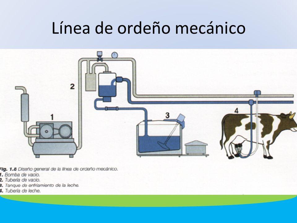 Línea de ordeño mecánico