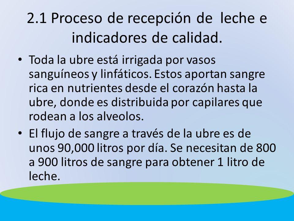 2.1 Proceso de recepción de leche e indicadores de calidad. Toda la ubre está irrigada por vasos sanguíneos y linfáticos. Estos aportan sangre rica en