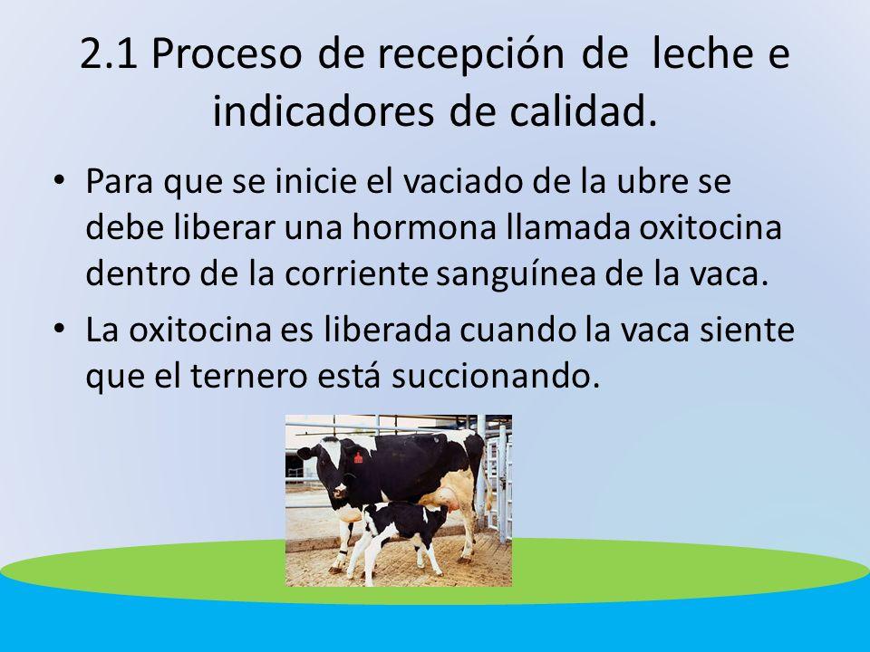 2.1 Proceso de recepción de leche e indicadores de calidad. Para que se inicie el vaciado de la ubre se debe liberar una hormona llamada oxitocina den