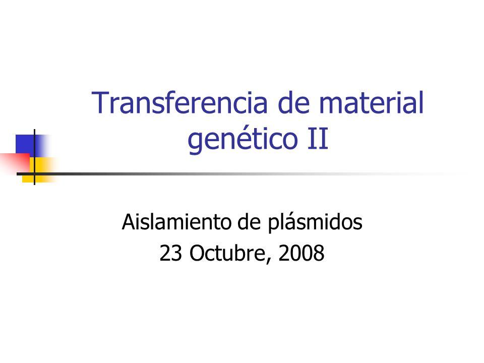Transferencia de material genético II Aislamiento de plásmidos 23 Octubre, 2008