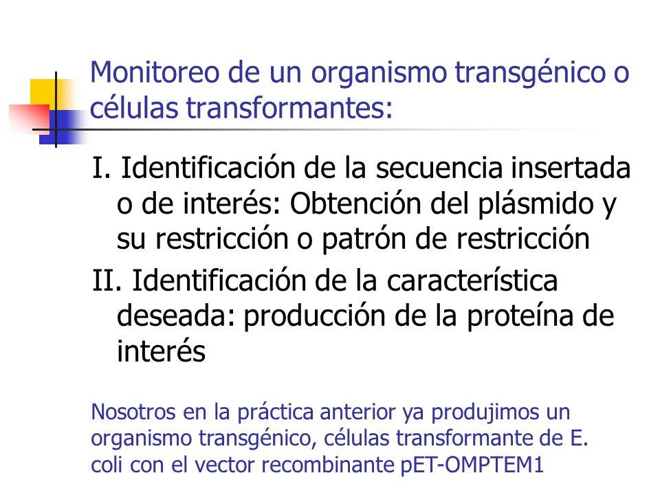 Monitoreo de un organismo transgénico o células transformantes: I. Identificación de la secuencia insertada o de interés: Obtención del plásmido y su