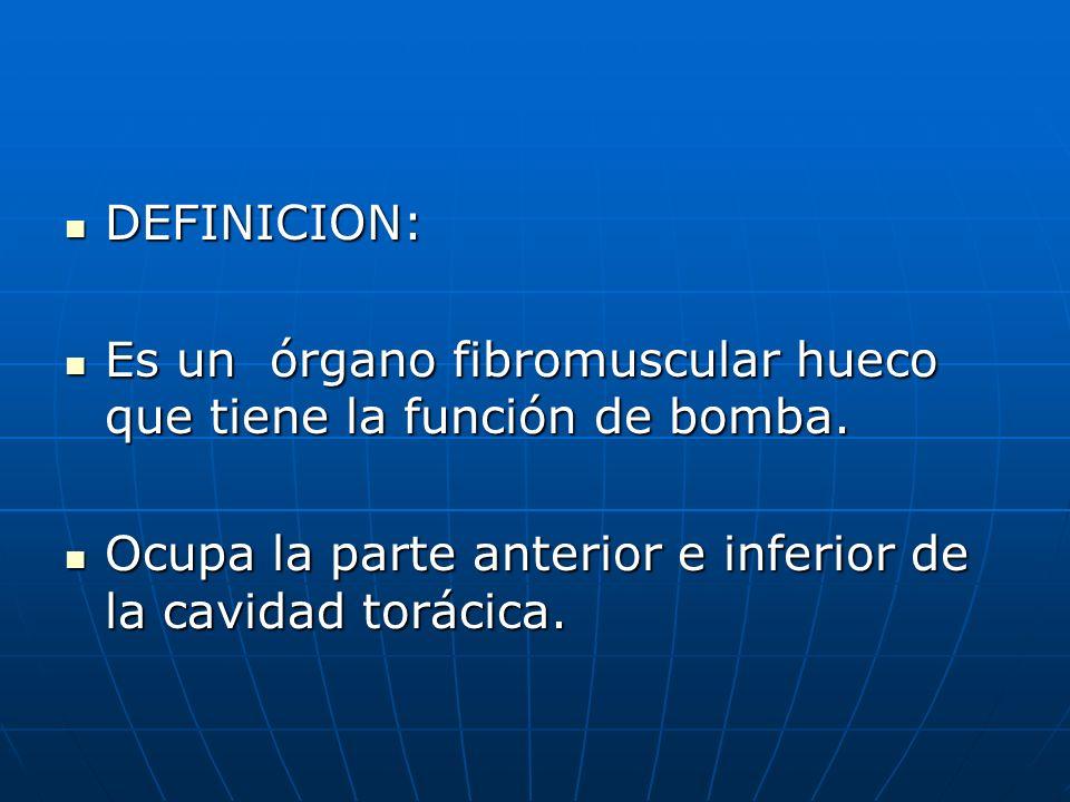 DEFINICION: DEFINICION: Es un órgano fibromuscular hueco que tiene la función de bomba. Es un órgano fibromuscular hueco que tiene la función de bomba
