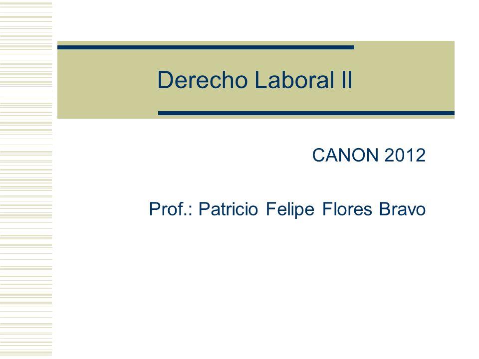 Derecho Laboral II CANON 2012 Prof.: Patricio Felipe Flores Bravo